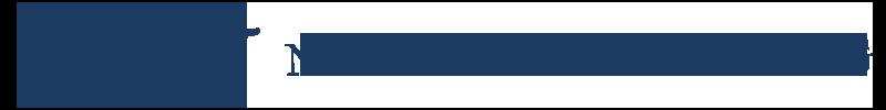 logo_ne_new_blue